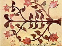 arabian_illustrator_about_herbs_treatise_by_dioscorid_lentil_fine_art_prints_s.jpg